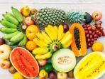 ilustrasi-kumpulan-buah-buahan.jpg