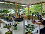 komunitas-bonsai.jpg
