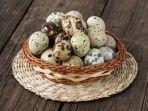 manfaat-telur-puyuh.jpg