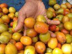 pengunjung-pasar-tradisional-mardika-ambon-berkerumun-membeli-tomat-x.jpg
