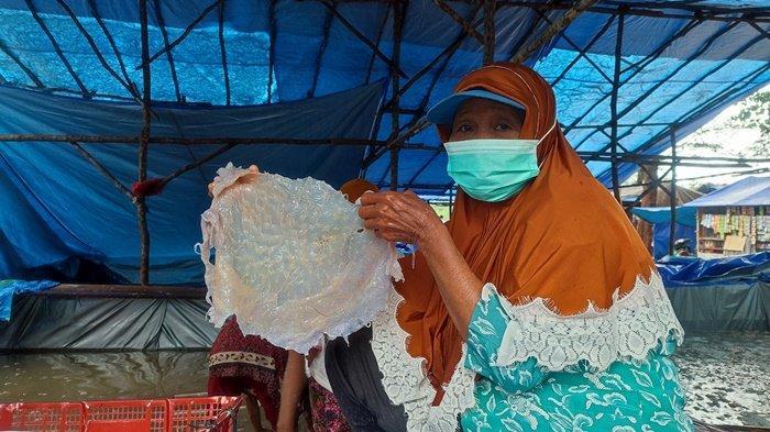 Jangan Anggap Remeh Ubur-ubur,Warga Desa di Bangka Belitung Mengolahnya Buat Diekspor ke China