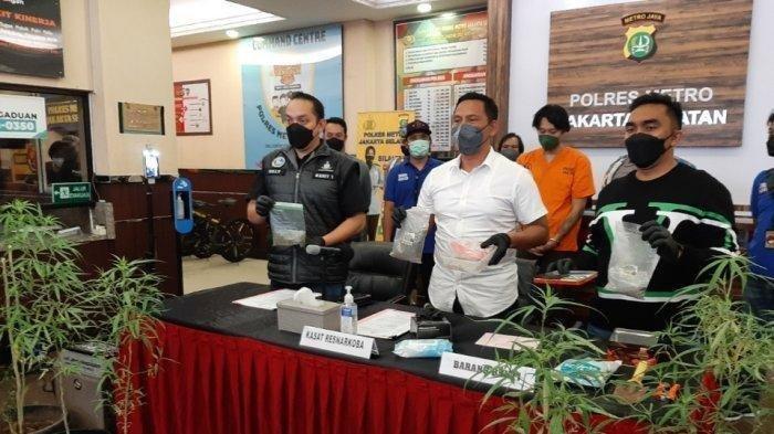 OK Tanam Ganja Disembunyikan di Kamar Mandi, Untuk Menghilangkan Rasa Nyeri di Punggung