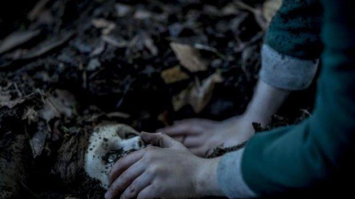 Invisible Man sampaiSonic the Hedgehog, Inilah 5 Film Hollywood yang Dijadwalkan Tayang Februari