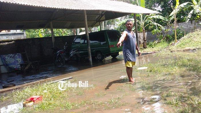 Banjir di Selat Blahbatuh Gianyar, Koi Hingga Ayam Peliharaan Warga Hilang Tersapu Arus