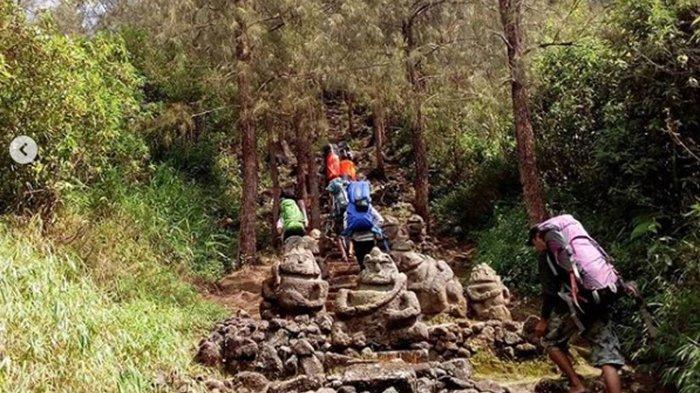 Cerita para Pendaki Mengenai Alas Lali Jiwo Gunung Arjuno, Sesatkan Pendaki Hingga Ada yang Linglung