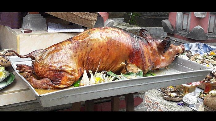 Ihwal Tradisi Mebat, Sesangi, dan Ribuan Babi yang Mati di Bali