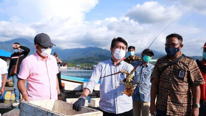Potensi KKP Belum Tergarap Maksimal, Pemkab Klungkung Lirik Pengembangan Budidaya Komoditi Seafood