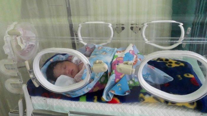 BREAKING NEWS - Orangtua dari Bayi Perempuan yang Dibuang di Jembrana Ditangkap
