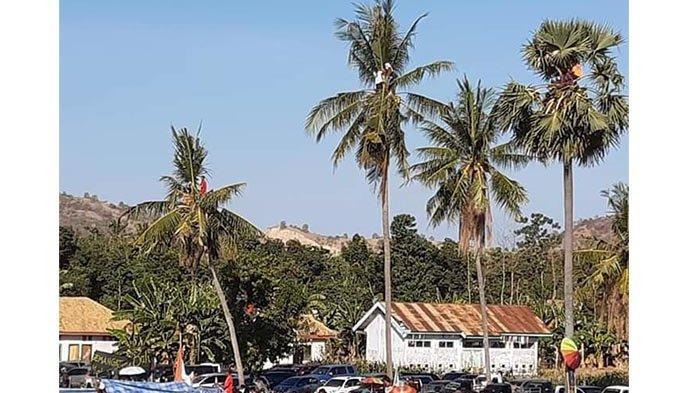 Penonton Sampai Panjat Pohon Kelapa, Perseden Tahan Imbang Persebi Bima, Buka Peluang 32 Besar