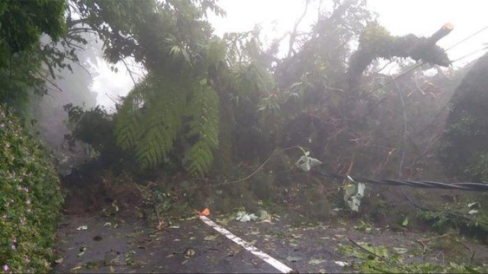 Hujan Lebat Seharian Sebabkan Bencana Longsor di Sejumlah Titik di Bangli Bali