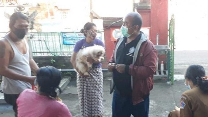 Anjing Serang 4 Warga di Desa Tihingan Klungkung Dinyatakan Positif Rabies