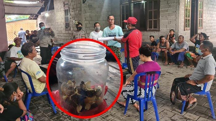 Kronologi Tewasnya Putu Ayu Bocah Asal Buleleng, Muntah & Mual Usai Makan Kerupuk Kulit Ikan Buntal