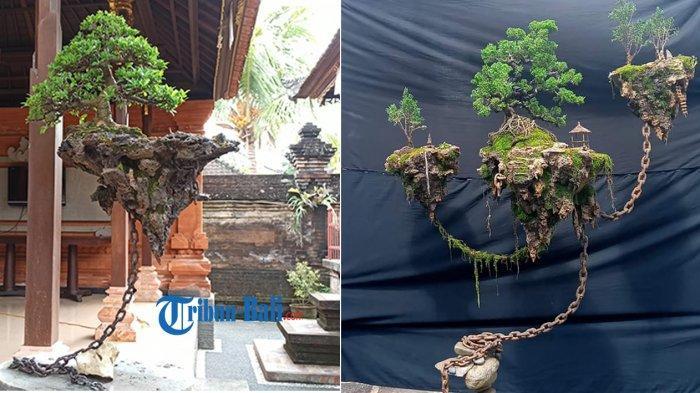 FOTO - Foto Unik Bonsai Avatar 1 – 4 di Badung Bali, Konsep 5 Tidak Lagi Pakai Rantai