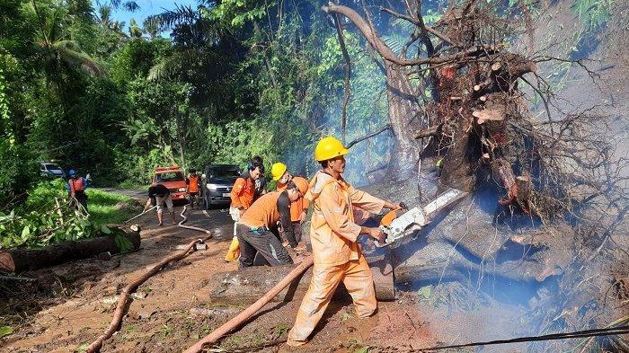Pohon Tumbang Tutup Jalan Bakbakan - Bangli, Kepala BPBD Gianyar: Bencana Terkendali