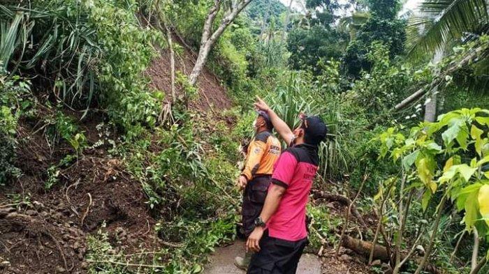 Bencana Pohon Tumbang dan Longsor Terjadi di Beberapa Titik di Karangasem