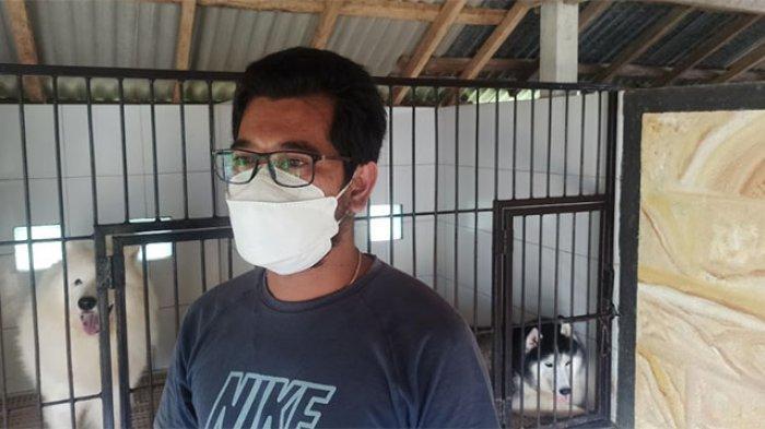 Berawal dari Hobi, Peternak Anjing Ras di Desa Getasan Badung Bisa Raup Omzet Rp 25 Juta per Bulan