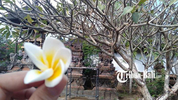 Bunga dan Kuwangen dalam Sarana Persembahyangan Agama Hindu, Berikut Bunga yang Tidak Boleh Dipakai