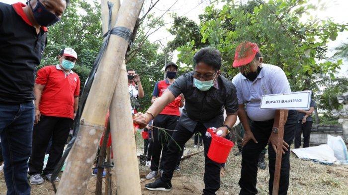 Sumbangsih Presiden RI ke-5 Megawati, Giri Prasta Pimpin Penanaman Cemara Udang di Pantai Samigita