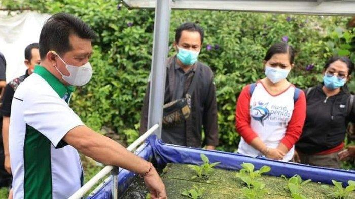 Sidak Bantuan ke Warga Miskin, Bupati Suwirta Dapati Ada Bantuan Hidroponik Dibongkar