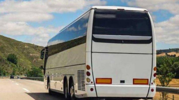 Cerita Ngeri Sopir Bus Malam Lihat Penumpang Menghilang Hingga Sosok Putih Menyebrang Jalan