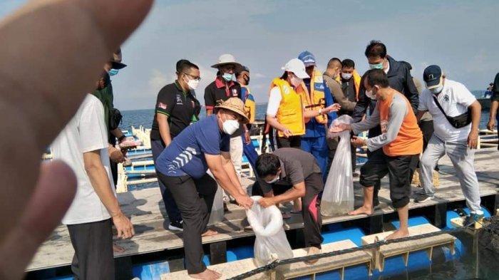 Harga Jual Kerapu Candikusuma Jembrana Masih Lesu Akibat Pembatasan Masuknya Kapal dari Luar Negeri