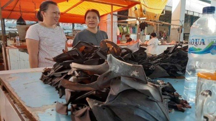 Imbas Mewabahnya Virus Corona, Perekor Harga Kelelewar di Pasar Tomohon Ini Anjlok Hingga Rp 30 Ribu