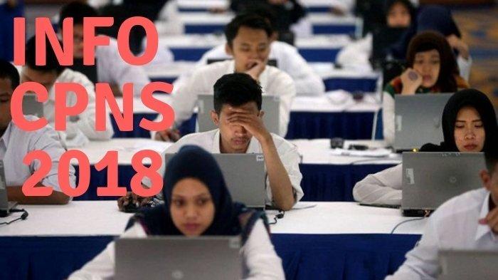 Ada 5 Sesi Tes Seleksi Kompetensi Dasar CPNS 2018, Peserta Wajib Hadir 1 Jam Sebelumnya