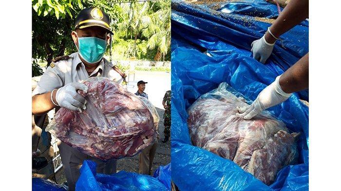 3,8 Ton Daging Celeng Ilegal Diselundupkan dari Palembang