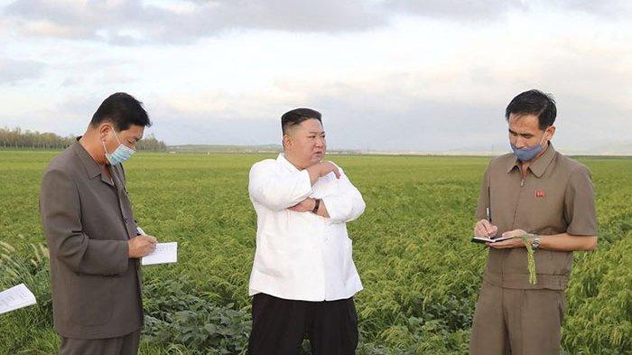 Pemimpin Korut Kim Jong Un Bakal Jatuhi Hukuman bagi Warganya yang Menyisakan Makanan