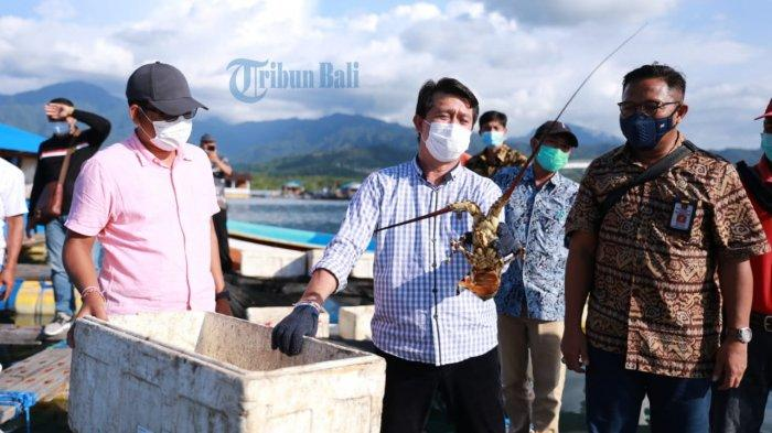 Petakan Potensi Perairan Nusa Penida Bali, Dinas Ketahanan Pangan dan Perikanan Turunkan Tim Ahli