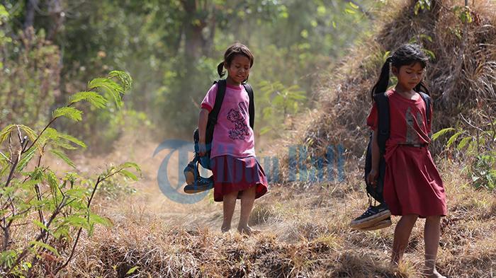 1.400 Anak per Tahun Putus Sekolah di Bali, Anak Alam Pilih Galang Koin