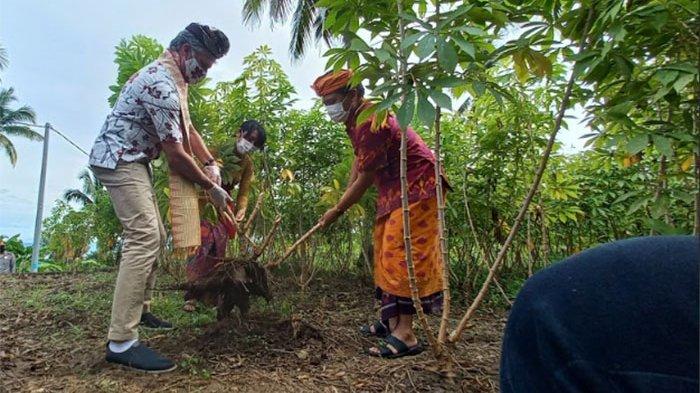 Duta Besar Kanada Sambangi Nusa Penida Klungkung, Bantu Pengembangan UMKM dengan Pelatihan Produk
