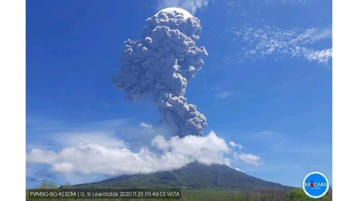 Gunung Ili Lewotolok NTT Meletus Pagi Tadi, Penjelasan PVMBG hingga Kepercayaan Warga tentang Erupsi