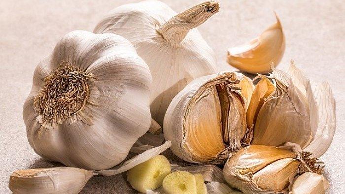 Foto ilustrasi beberapa siung bawang putih