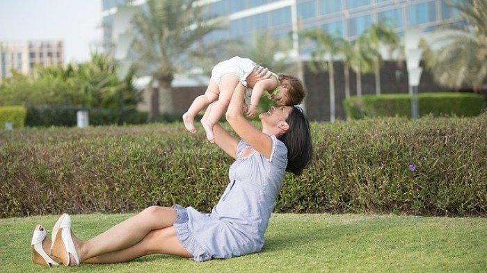 Daun Kelor Baik untuk Ibu Menyusui, Begini Cara Mengolah Daun Kelor Menjadi Teh