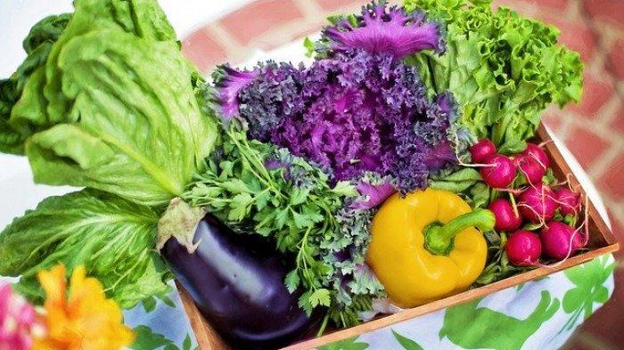Termasuk Sayuran Hijau, 4 Makanan Ini Dapat Mencegah dan Mengurangi Risiko Kanker Payudara