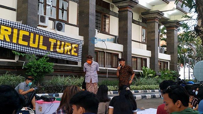 Direbut Perusahaan Minuman Kemasan dan PDAM, Subak di Bali Alami Krisis Air Irigasi