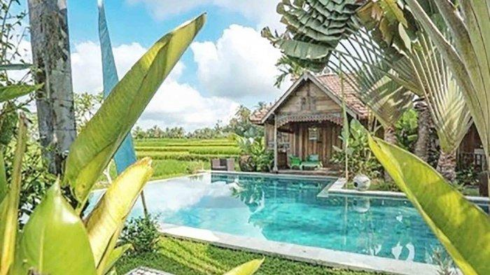 Rekomendasi 6 Penginapan di Tengah Sawah Tegalalang Gianyar Bali