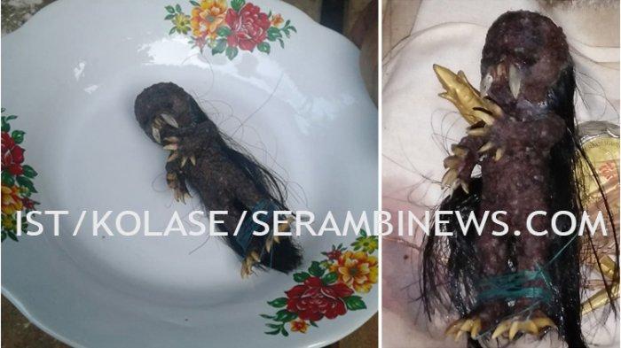 Heboh Penangkapan Jenglot Pencuri Uang di Pedalaman Aceh Timur, Begini Penjelasan Polisi