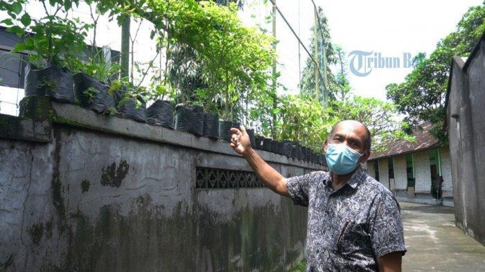 Berkebun Saat Pandemi di Pekarangan Rumah, Warga Asal Badung Ini Akui Bisa Lakukan Penghematan
