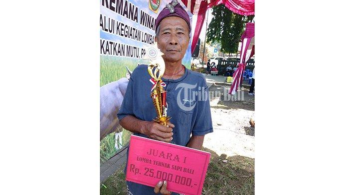 Kalim Pakai Uang Hadiah untuk Bayar Utang, Menang Lomba Sapi Bali dalam HUT Gianyar