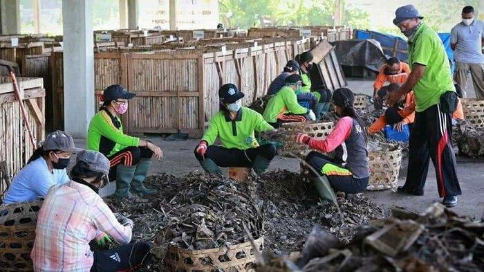 Pantau TOSS Karangdadi,Bupati Klungkung Sebut Pekerja Kurang Efektif