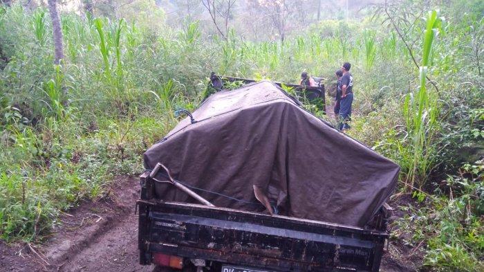 Polisi Amankan Diduga Pelaku Illegal Logging Hutan Lindung Munduk Rendang