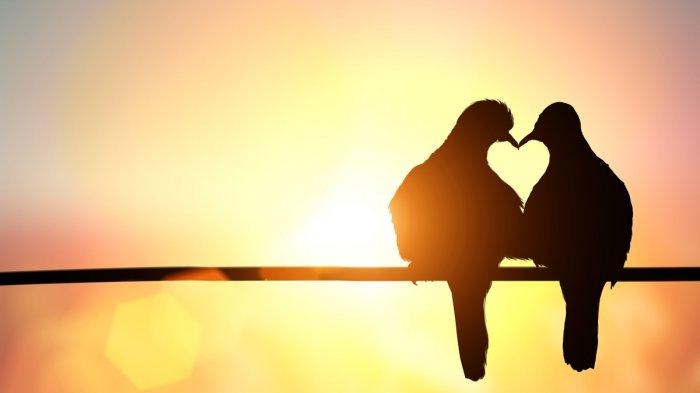 Tes Kepribadian: Apa Yang Anda Lihat Pertama Kali Akan Menunjukkan Bagaimana Percintaan Anda