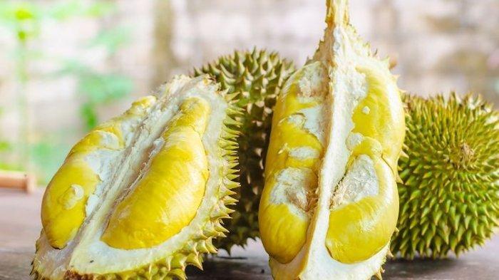 Benarkah Makan Durian Bisa Bikin Mabuk? Ini Penjelasan Ahli