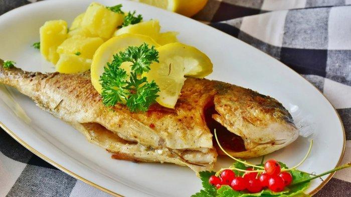 Waspada, Ini Golongan Ikan yang Sebaiknya Tidak Dikonsumsi Anak-anak, Bisa Membahayakan Kesehatan