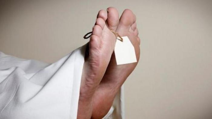 Terkait Pemulangan Paksa Jenazah Suspect Covid-19, Ini Kata Kadus Wanasari Denpasar