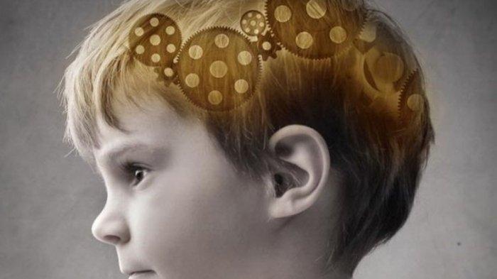 9 Makanan yang Baik untuk Perkembangan Otak Anak, Ada Buah Berry dan Jeruk