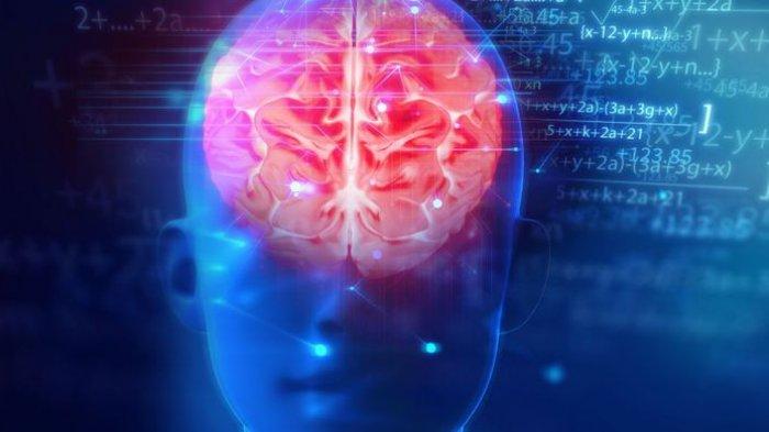 Gejala dan Penyebab Penyakit Radang Otak yang Harus Diwaspadai, Tak Bisa Dianggap Remeh