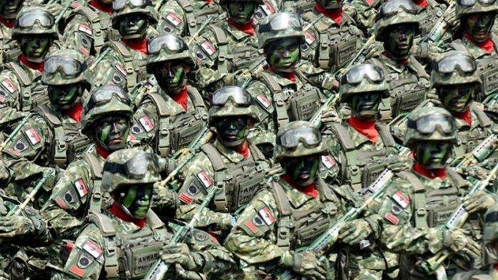 HUT TNI, Presiden Jokowi Apresiasi TNI, Komisi I Sebut TNI Sudah Berubah Menjadi Profesional Patriot